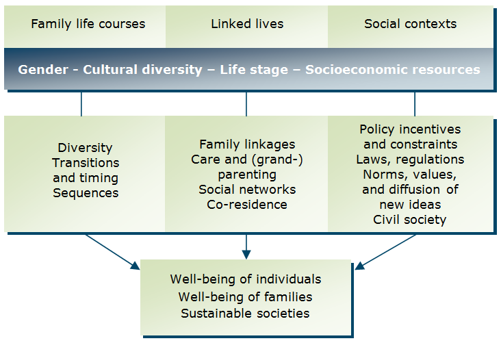 family developmental and life cycle theory journal article